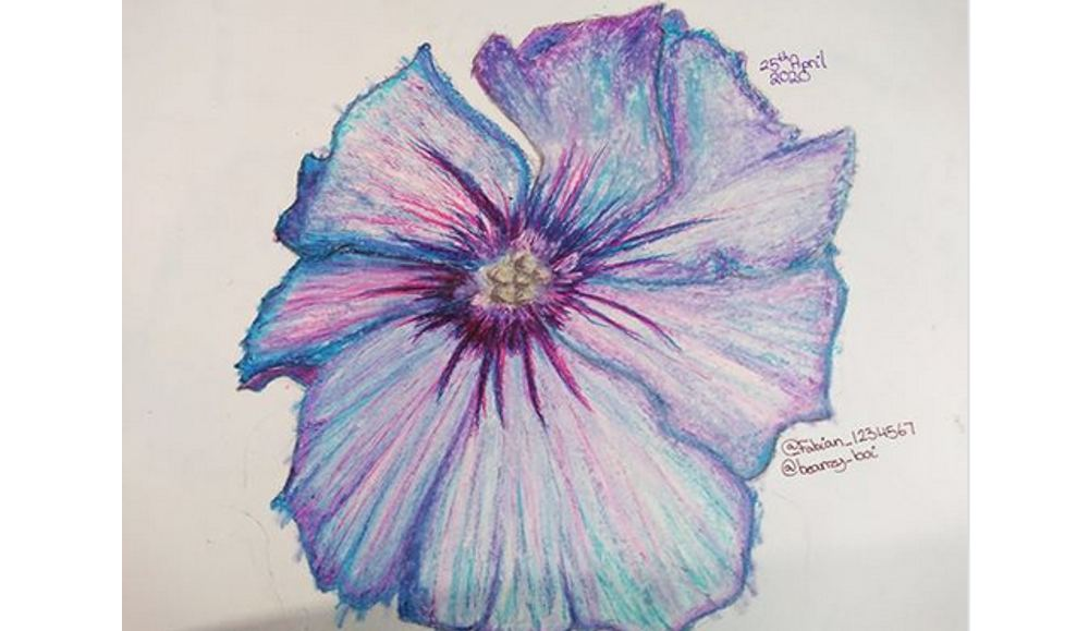 Poppy drawn by Holly's daughter